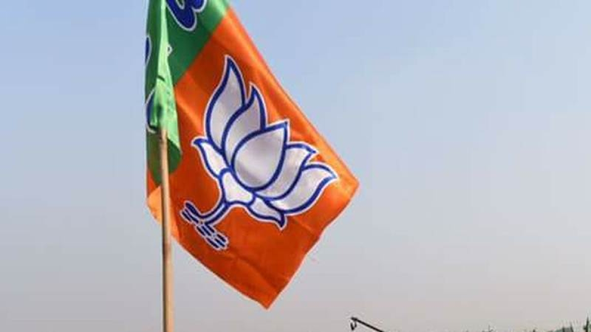 Jaitley, Javadekar, Gehlot appointed BJP poll chiefs for Gujarat, Karnataka, HP