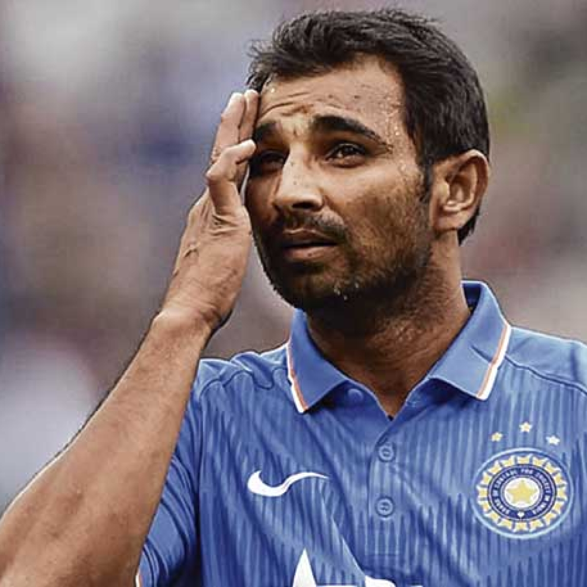 Mohammed Shami doesn't need to surrender, we have got stay: Lawyer