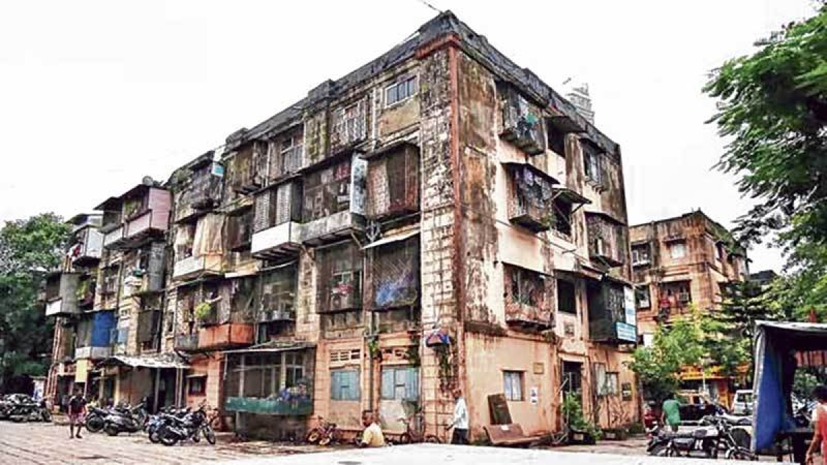 Builder approaches Bombay High Court over 'faulty' BDD chawl bidding process