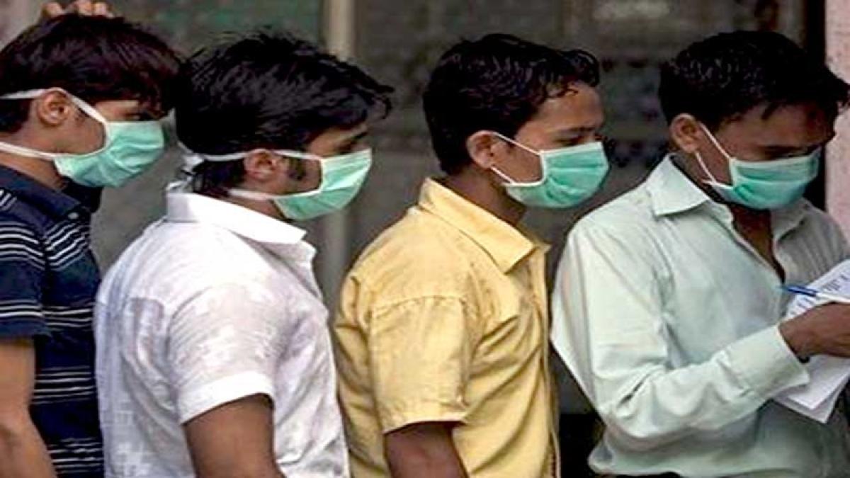 330 positive swine flu cases reported in Telangana