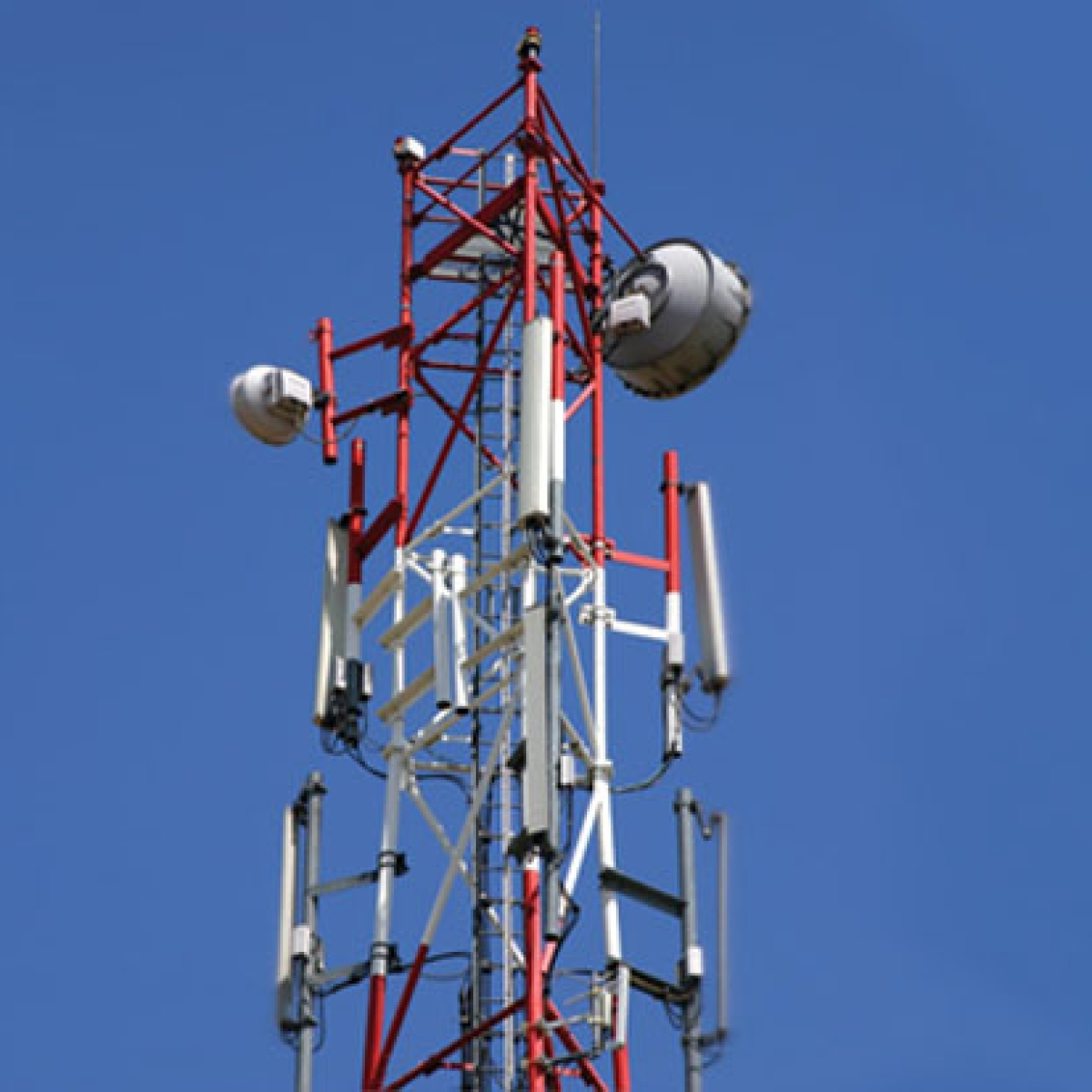 With telecom tower frauds on the rise, beware of people offering high rent to set up a tower