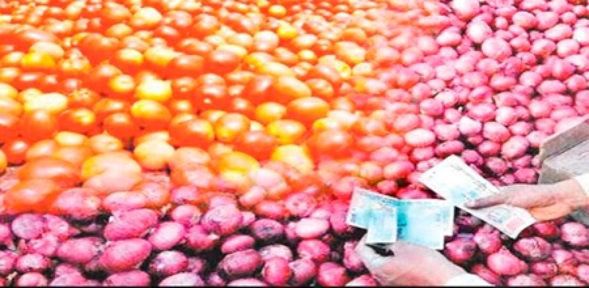 Bhopal: Tomato price slumps, onion rate on rise