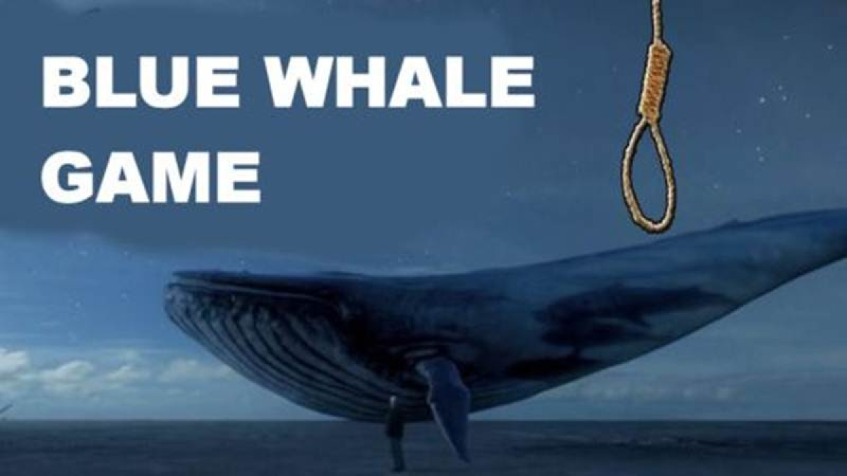 Student rescued from suspected Blue Whale game