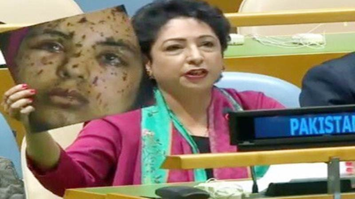 Pakistan claims it's fake picture at United Nations General Assembly 'backfired' on India