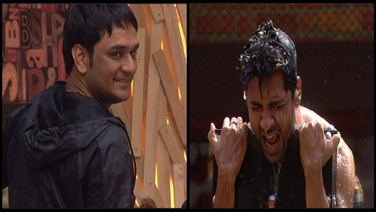 Bigg Boss 11: Team Vikas Gupta wins luxury budget task, Bigg Boss sends Diwali sweet for housemates; Day 17 updates