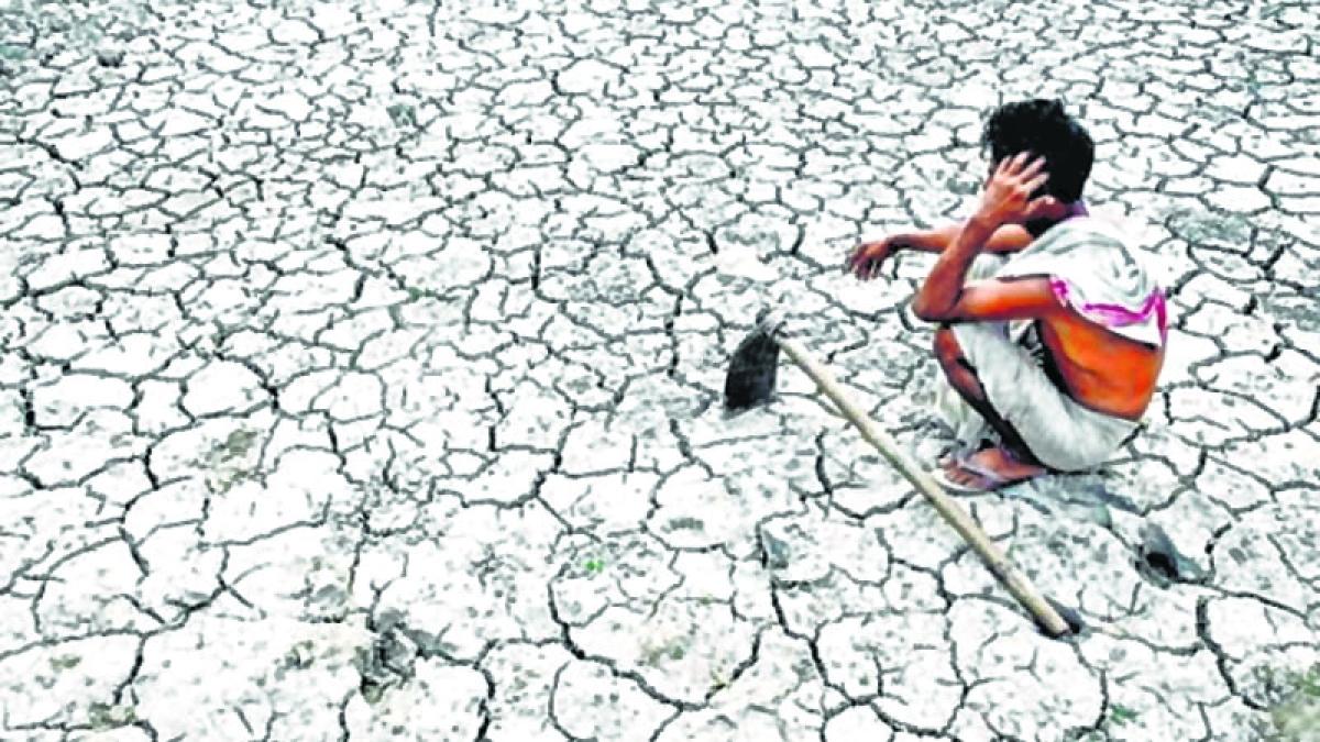 Maharashtra farmers protest against agrarian distress