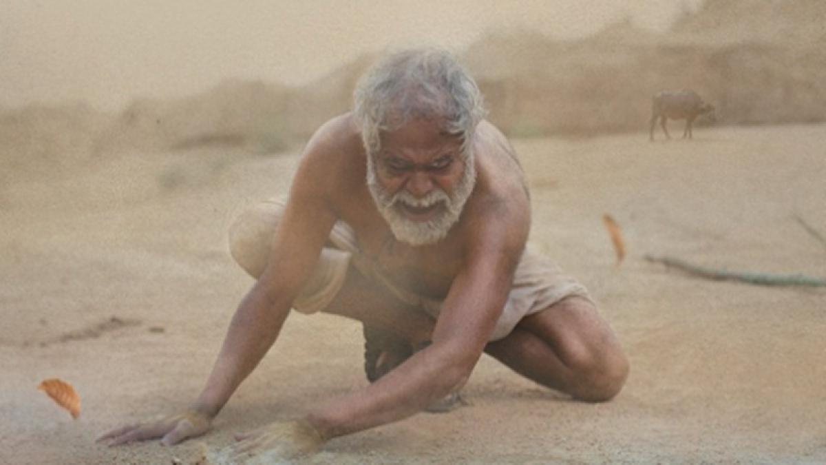 Kadvi Hawa trailer: Sanjay Mishra, Ranvir Shorey film deals with bitter truth of climate change