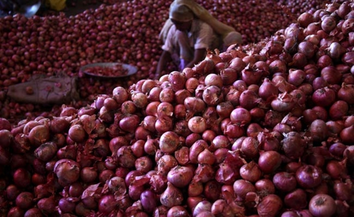 Onion prices to moderate in next few days: Agri Min