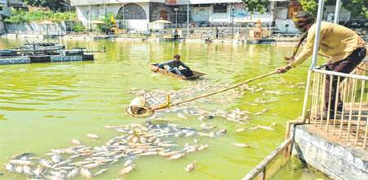 Ujjain: Officials, contractors make hay while beautification projects die