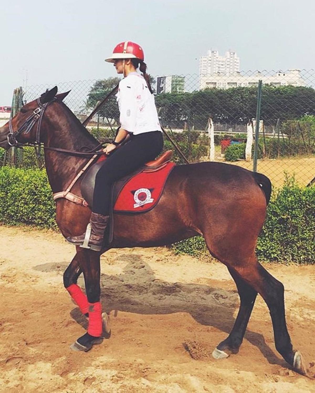 Maharashtra: Tourists upset, no horse rides in Mahableshwar and Panchgani