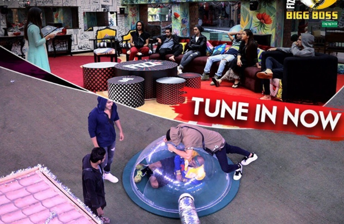 Bigg Boss 11 Day 85: Priyank Sharma and Luv Tyagi are nominated for the eviction
