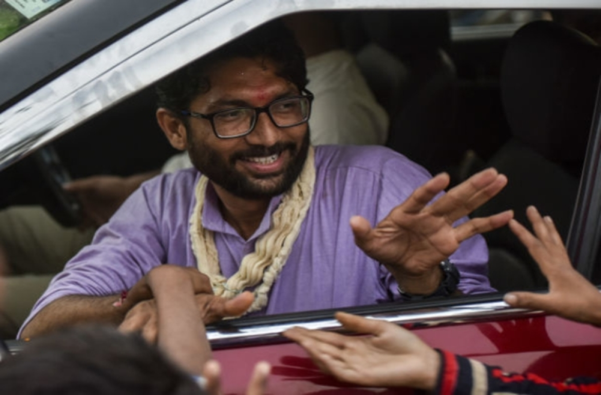 Gujarat Assembly Election Results: Dalit leader Jignesh Mevani wins Vadgam seat