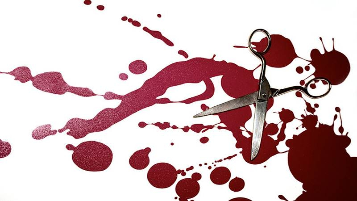Noida double murder: 15-year-old confesses to murdering mother, sister with scissors, bat, pizza cutter