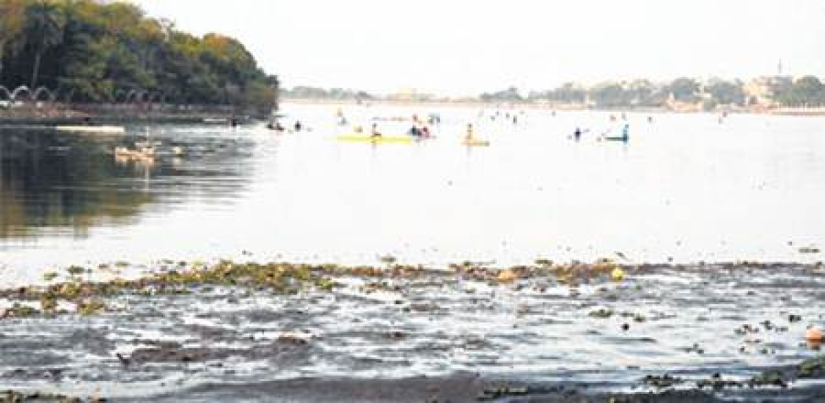 Bhopal: Pollution in Lower Lake raises stink