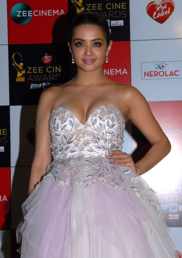 Surveen Chawla attends the 'Zee Cine Awards 2018' ceremony in Mumbai on December 19, 2017. / AFP PHOTO / Sujit Jaiswal