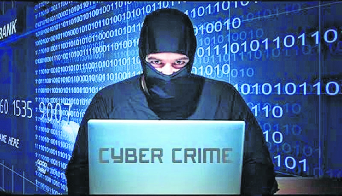 Plea in Bombay High Court against rising cyber crime and online frauds