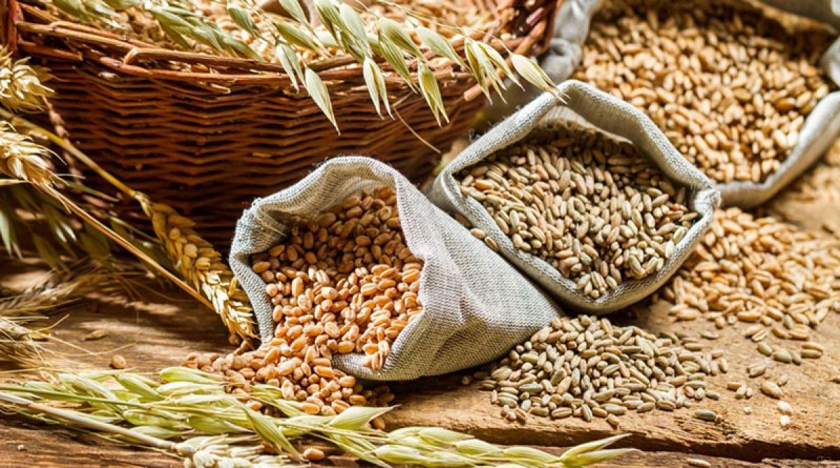 Centre to provide free food grains to 80 cr beneficiaries in May, June under PM Garib Kalyan Anna Yojana
