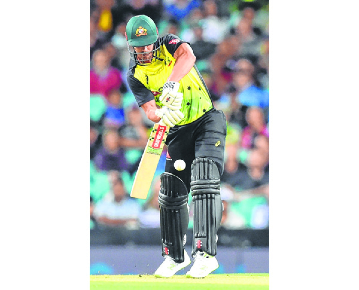 Lynn, Maxwell hit out in Oz T20 win over Kiwis