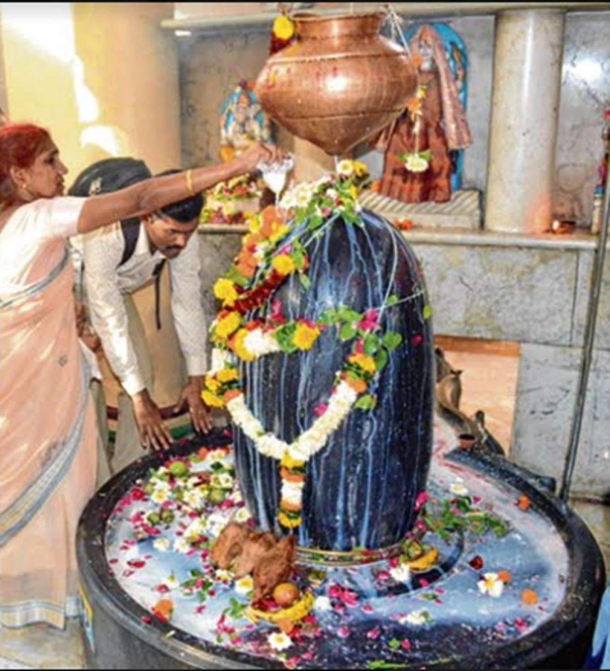 Indore: Prayers, bhajans, chants mark Mahashivratri