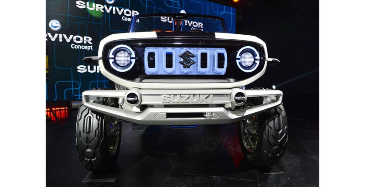 Lack of policy not to hinder auto companies' EV ride
