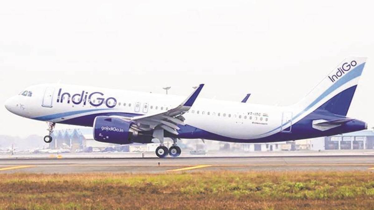 IndiGo clocks highest-ever profit, revenue up 45%
