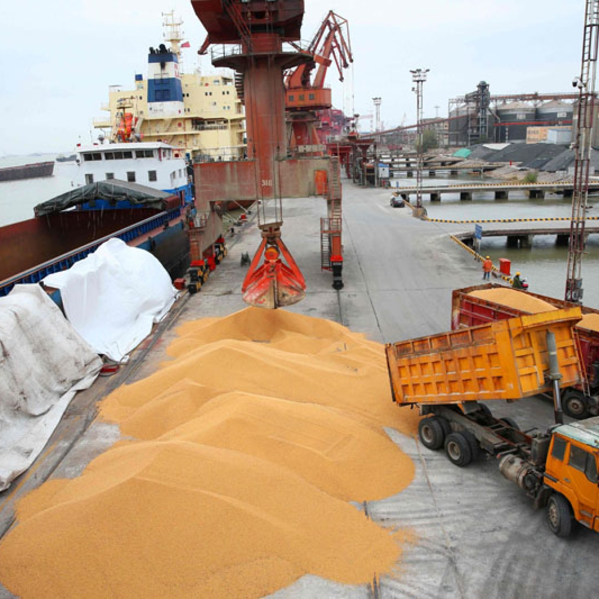 Exports post first rise in 7 months in nation, grow by 2.91%