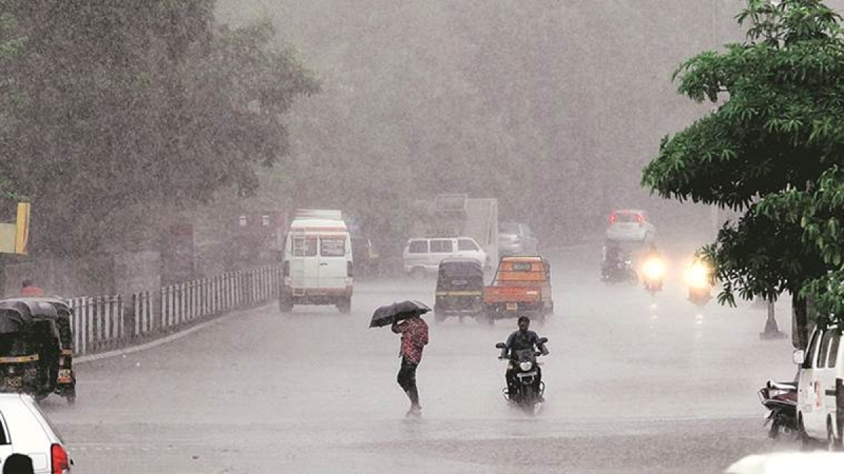 Mumbai Rains: Traffic updates from across the city, weather predictions