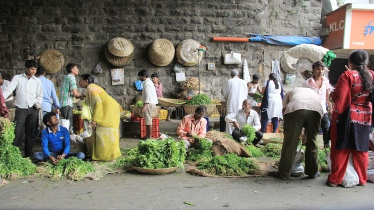 Retail inflation saw over 5-year high of 7.35 pc in Dec