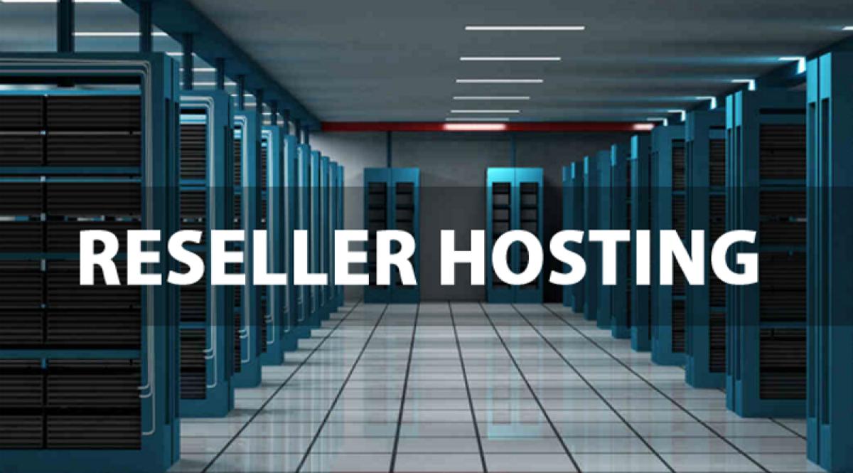 Does Reseller Hosting Make Business Sense?
