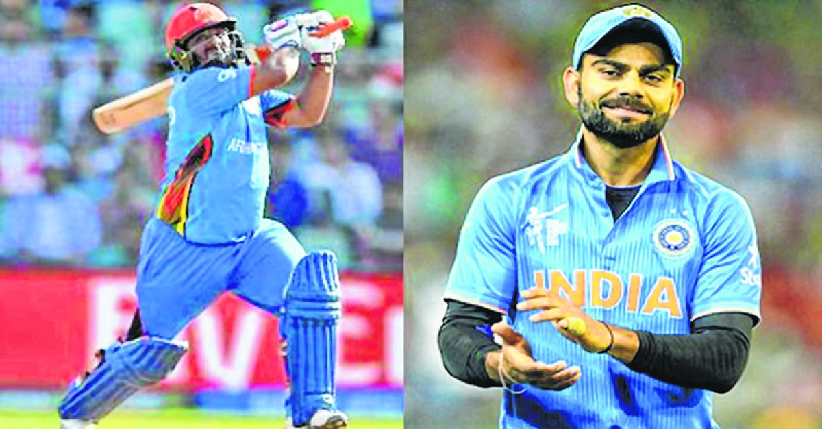 Why diet like Kohli when you can hit longer sixes: Shahzad