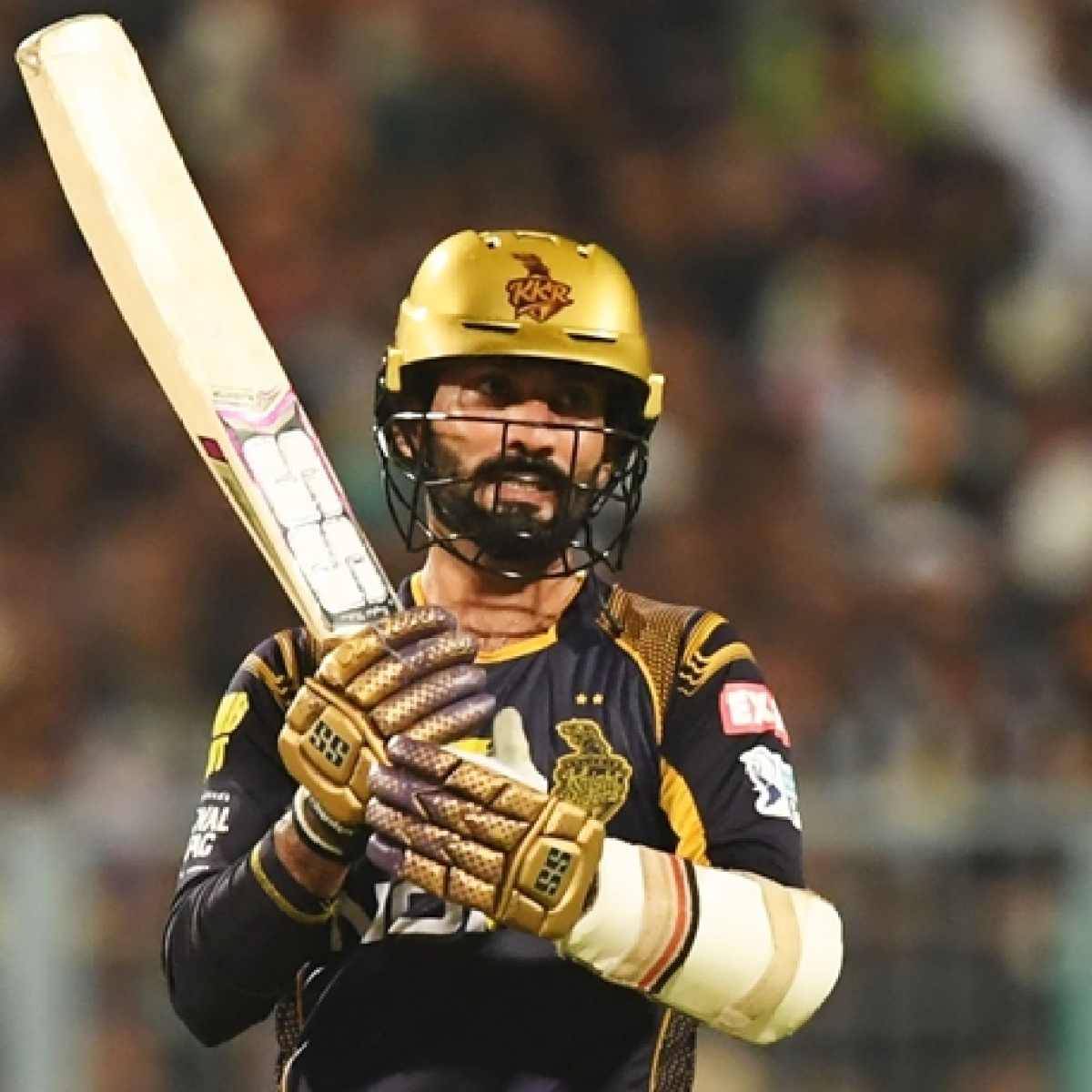 IPL 2020: Check out full schedule of Dinesh Karthik's Kolkata Knight Riders
