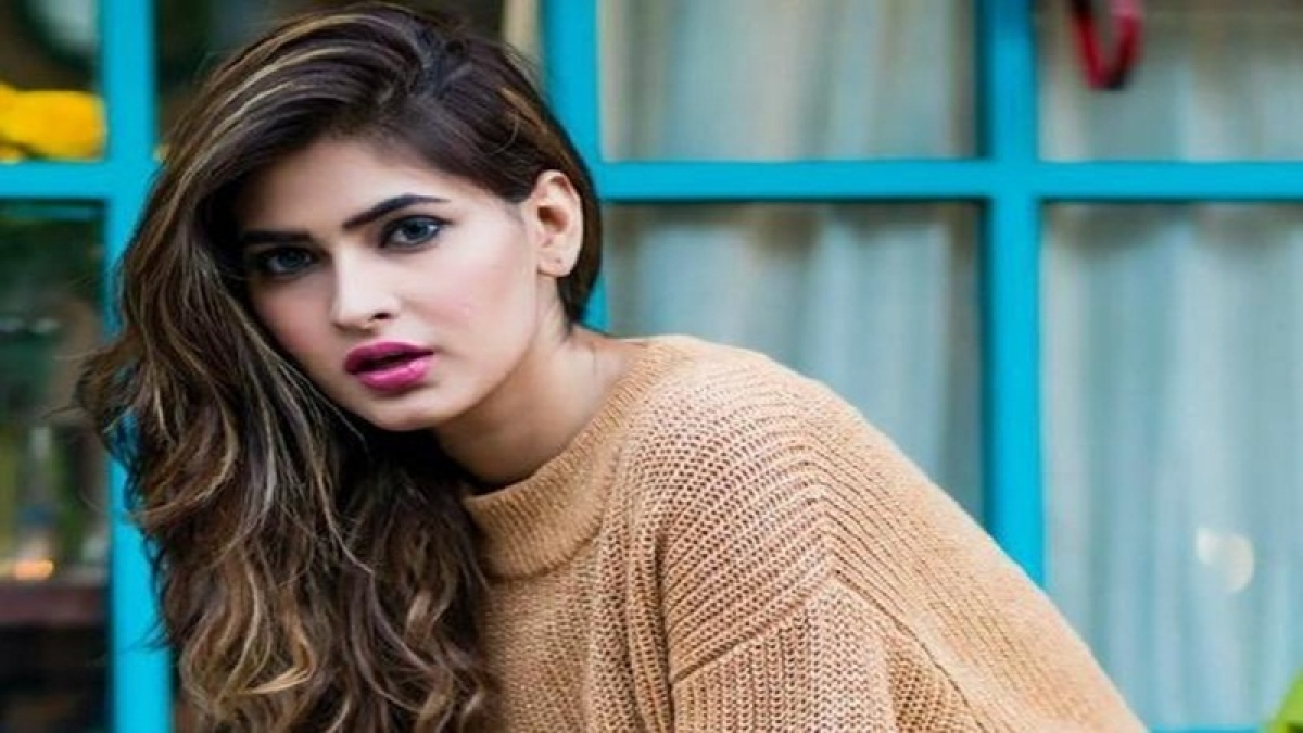 Karishma Sharma grabs everyone's attention with her latest bikini photoshoot; have a look