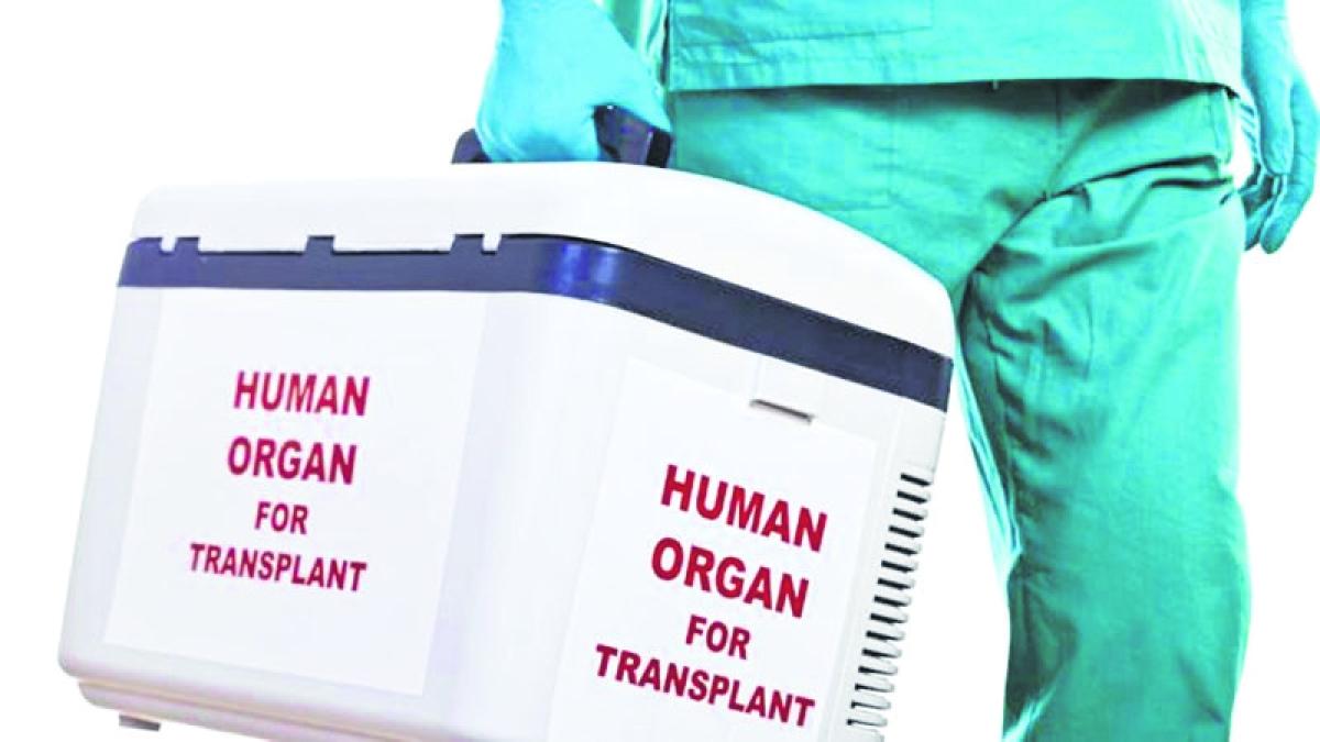 Bhopal: Bhopal to get organ transplant unit soon