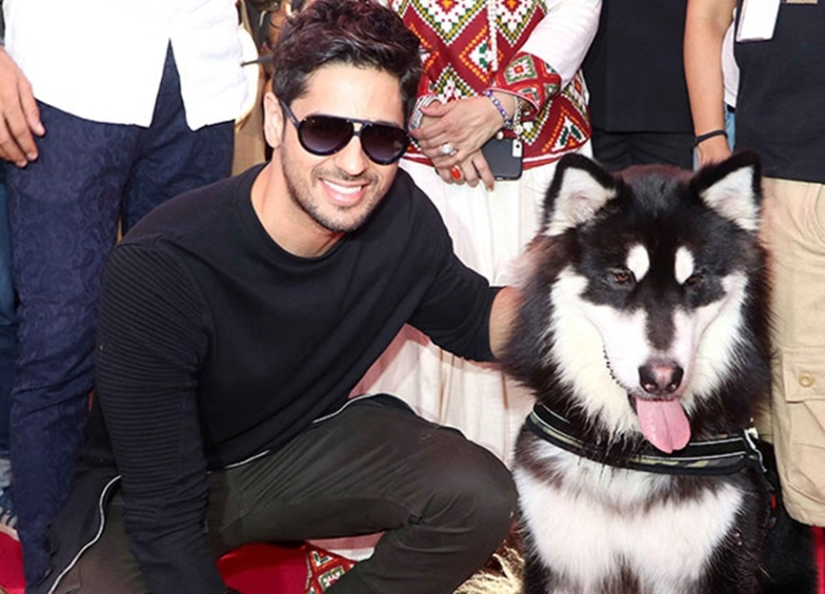 Sidharth Malhotra urges PM Narendra Modi to strengthen animal protection laws