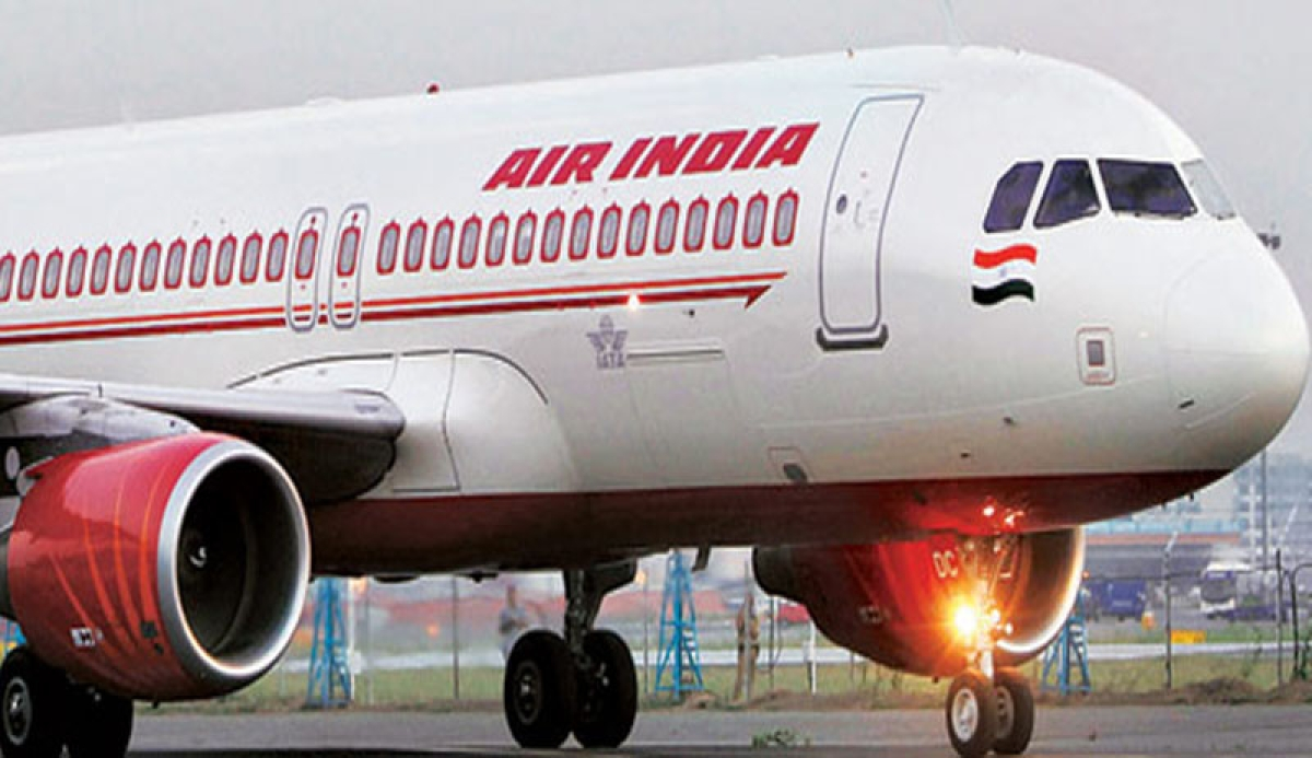 Doggy's day out: Dog enjoys travelling from Delhi to Bengaluru in business class of Air India flight
