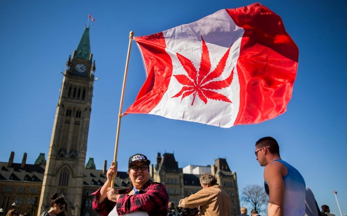 Canada Senate votes to legalise recreational marijuana