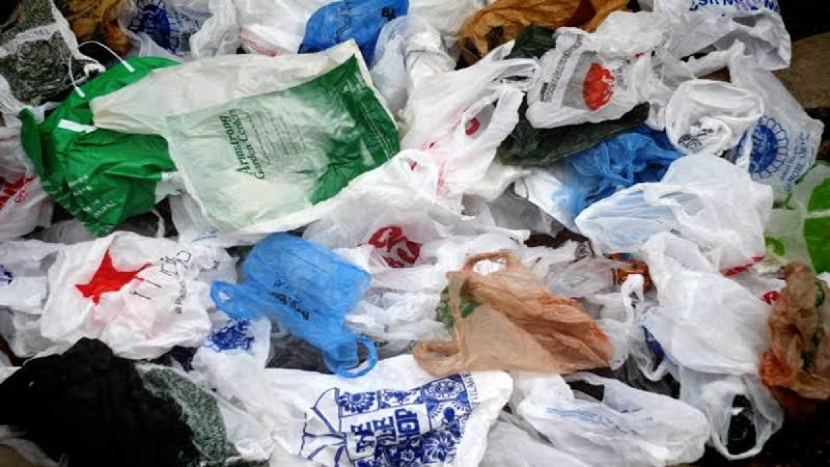Local bodies directed to dispose of plastic, Maharashtra government to Bombay High Court