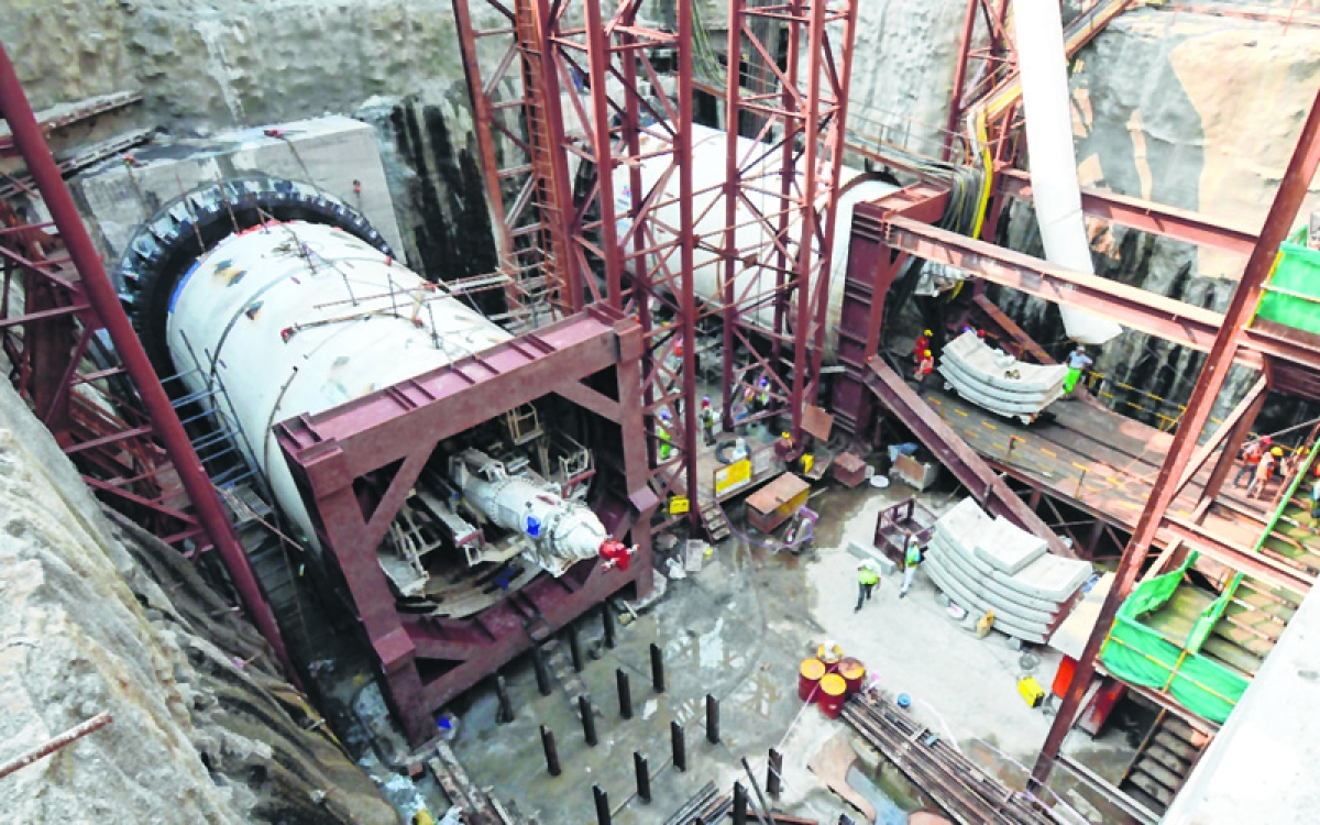 Mumbai: MMRCL must approach court for nod to work at night, says Tree Committee