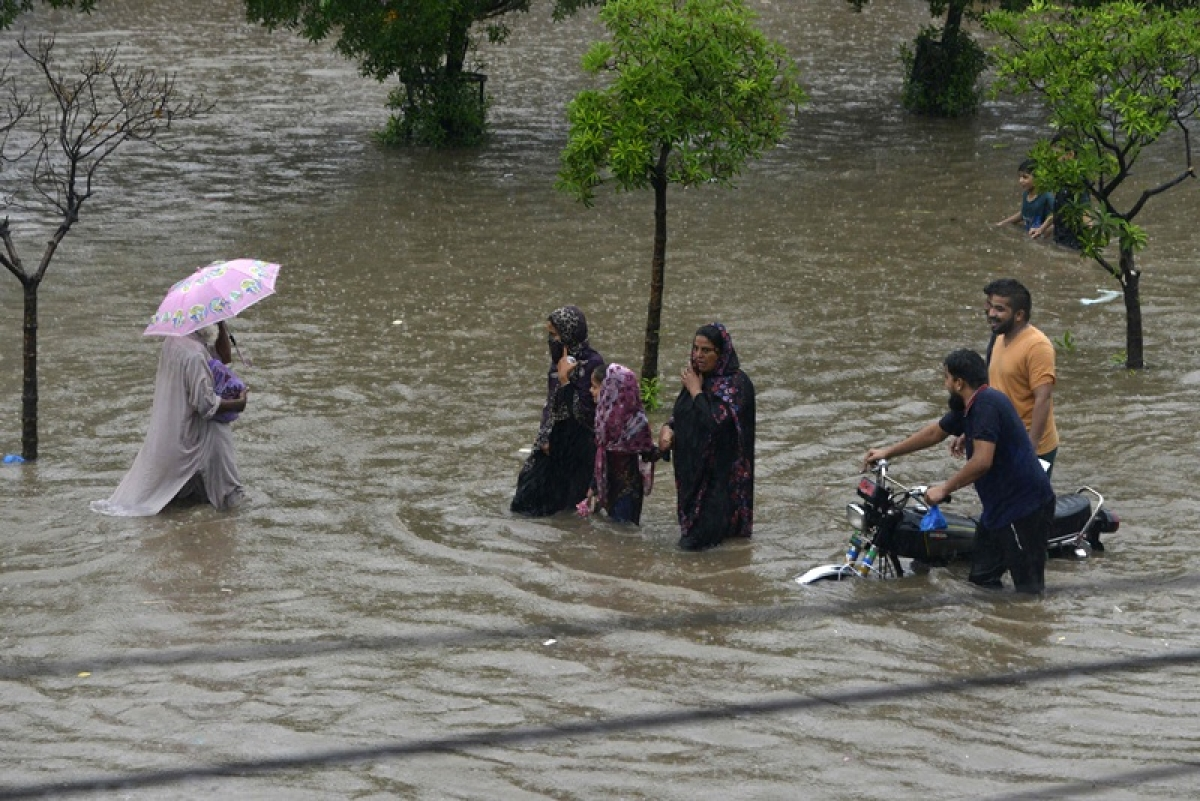 14 killed, 19 injured as heavy rains wreak havoc in Pakistan
