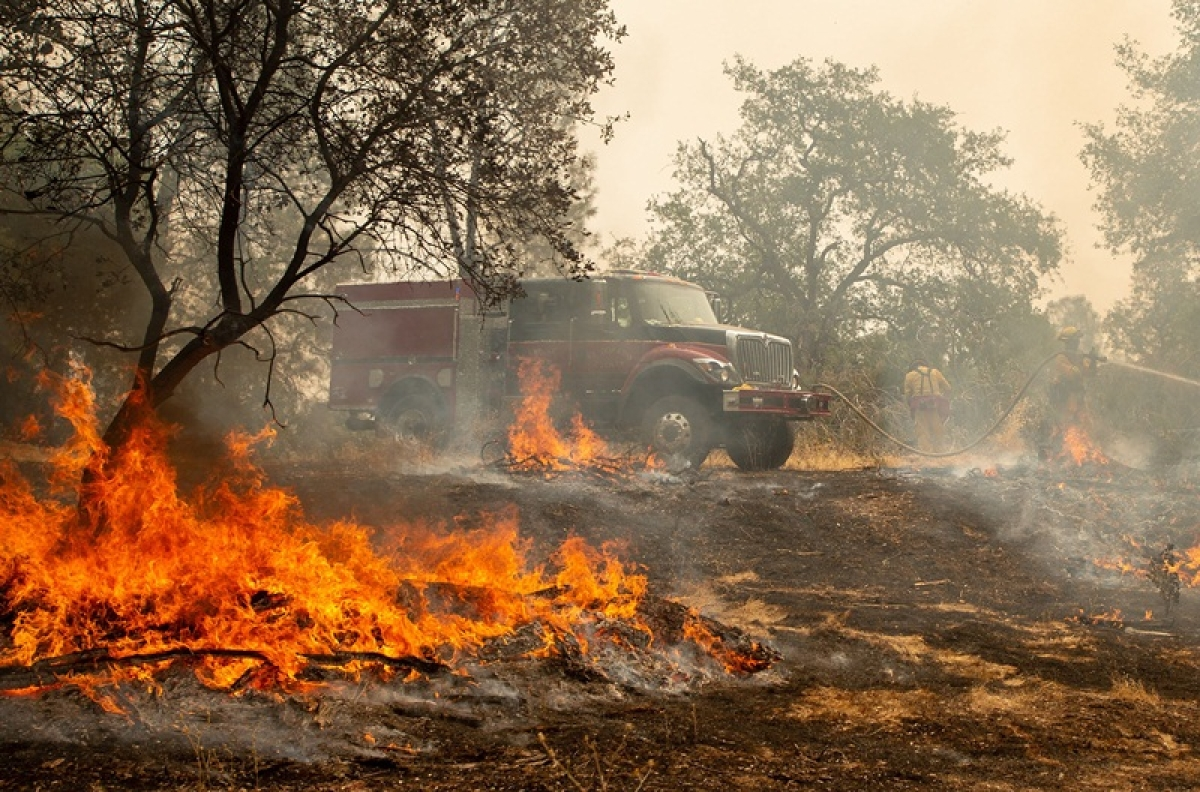 Delhi: Fire breaks out at cold storage in Keshav Puram