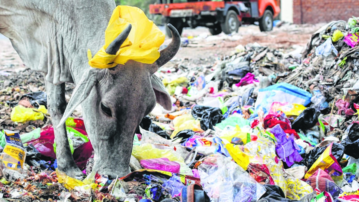 Centre asks States to tell all places of worship to prohibit single-use plastic