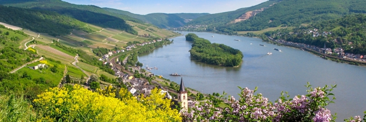 Middle Rhine River: Wandering through wine country