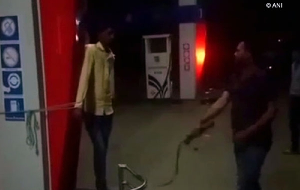 MP shocker: Petrol pump owner and his friend whips employee for being absent, watch video