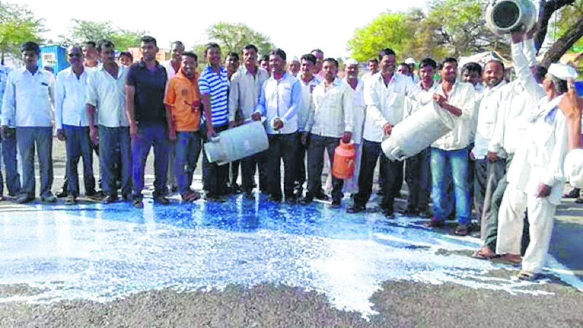 Milk Strike in Maharashtra: NDDB's project helps over 27,000 dairy farmers