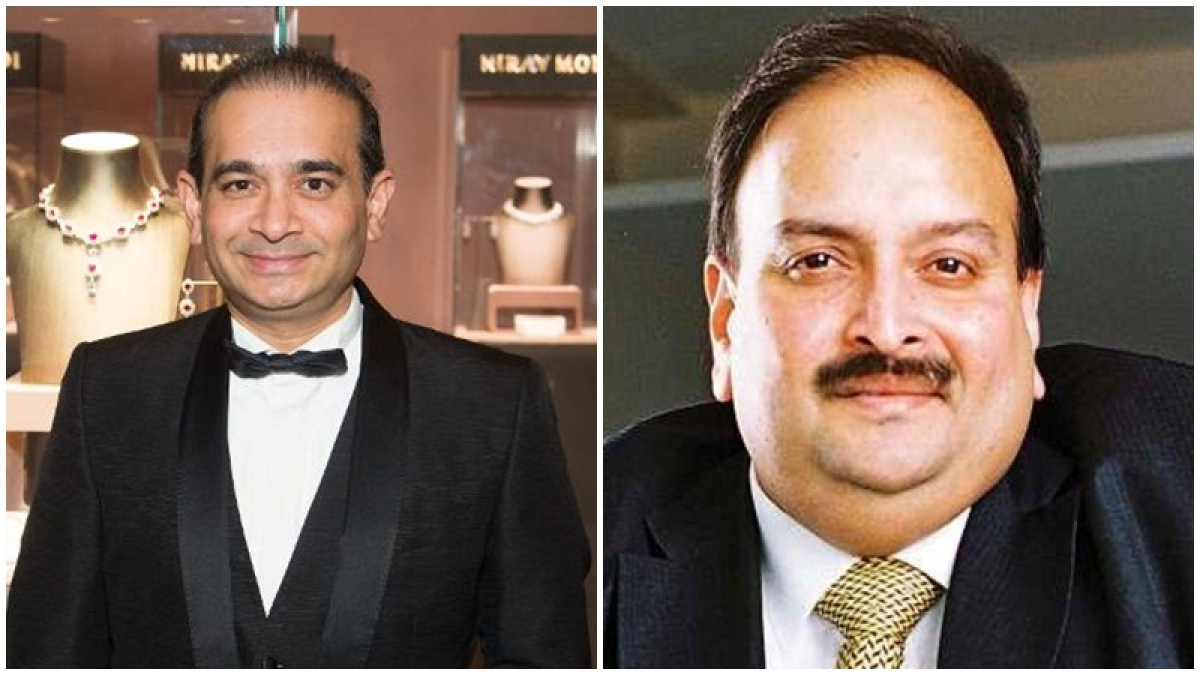 ED brings back Rs 1,350 cr worth polished diamonds, pearls of Nirav Modi, Mehul Choksi's firms
