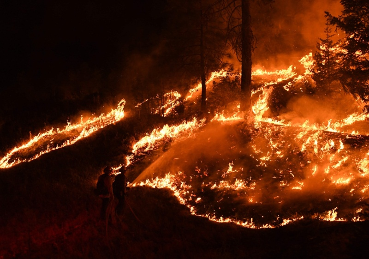 United States: California wildfire explodes in size, largest in state's history