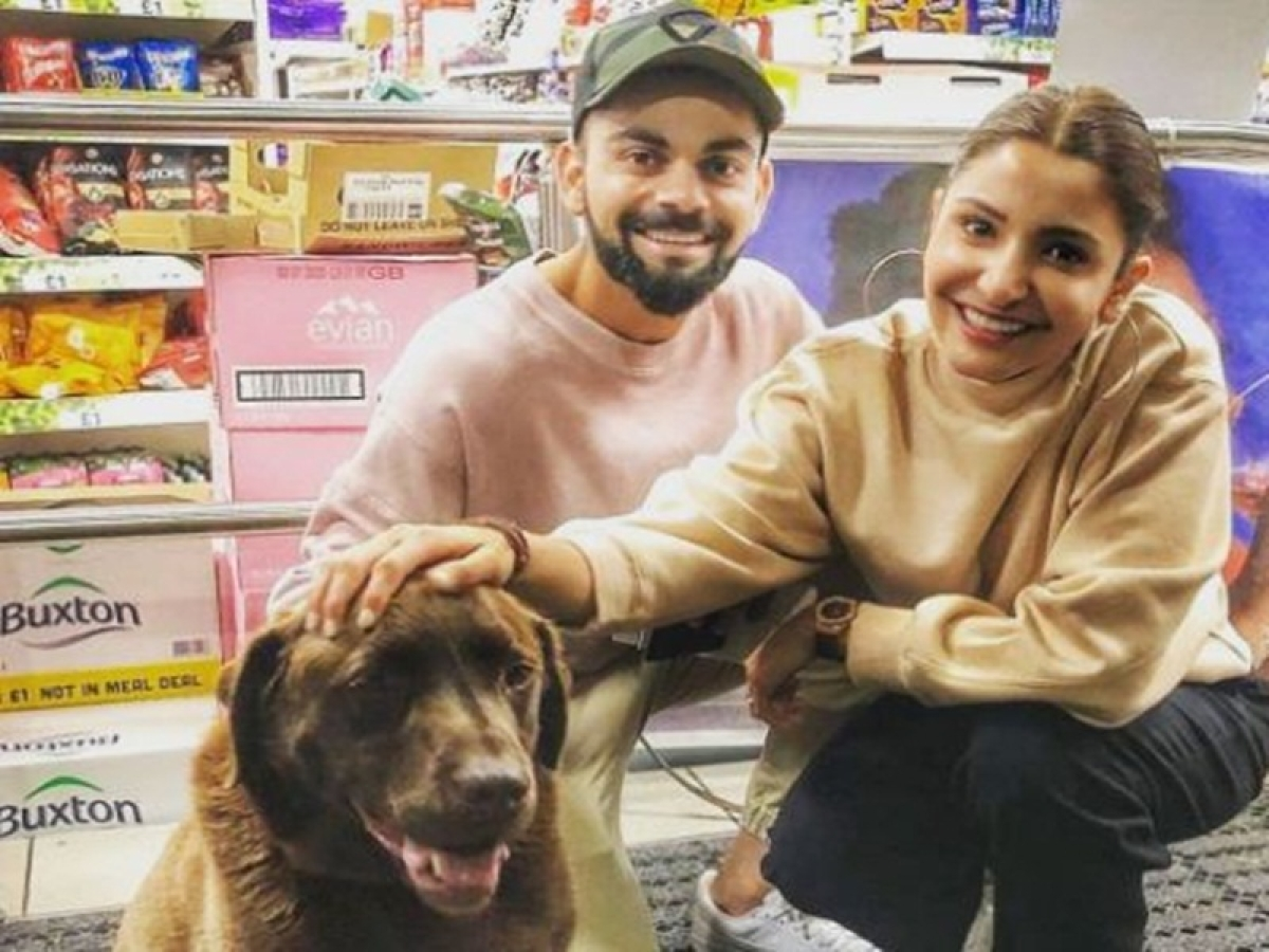 This picture reveals Virushka's love for dogs, have a look