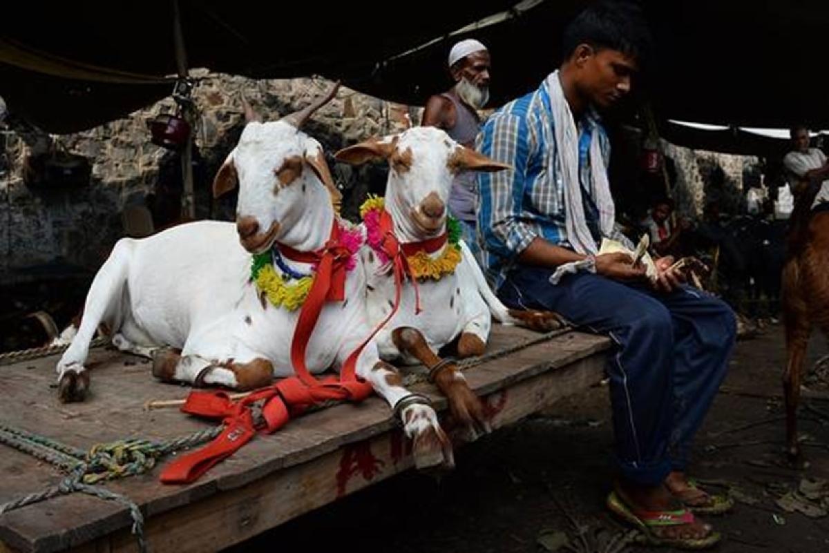 Bakri Eid: Leaders call for symbolic sacrifice