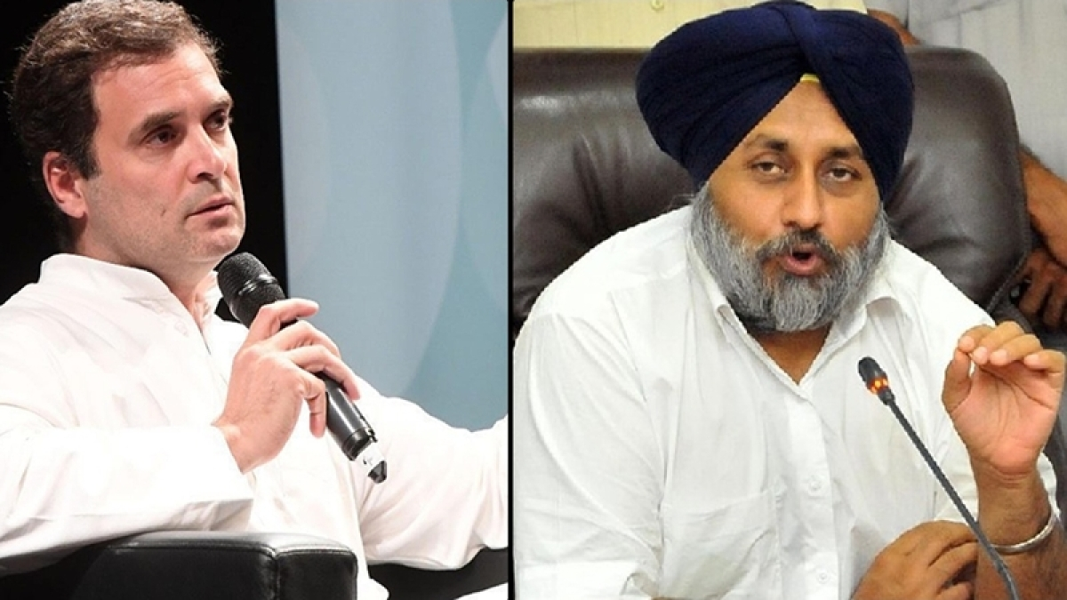 1984 anti-Sikh riots: Sukhbir Singh Badal slams Rahul Gandhi, says he has rubbed salt into wounds