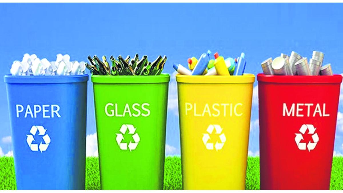 Waste segregation act violations: BMC prepares new by-laws